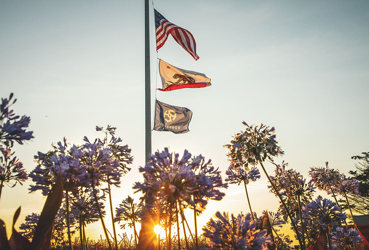Safe harbor, California and American flags